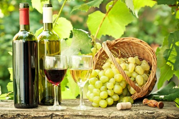 Sprijin pentru producătorii de vin din Argeş