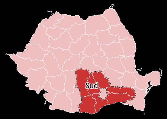 Argeşul preia conducerea Regiunii de Dezvoltare Sud Muntenia