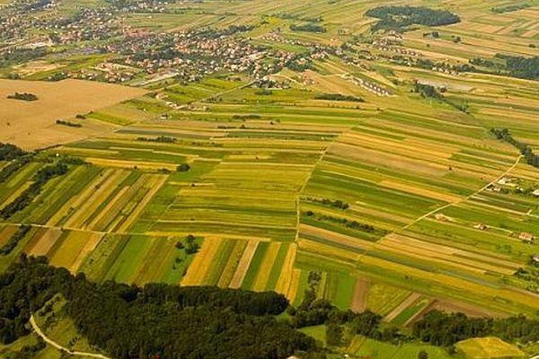 Mai puţine exploataţii agricole