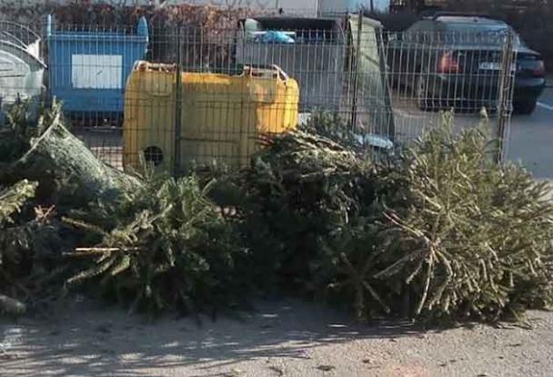 Salubritate 2000 SA începe ridicarea brazilor aruncaţi în vederea reciclării