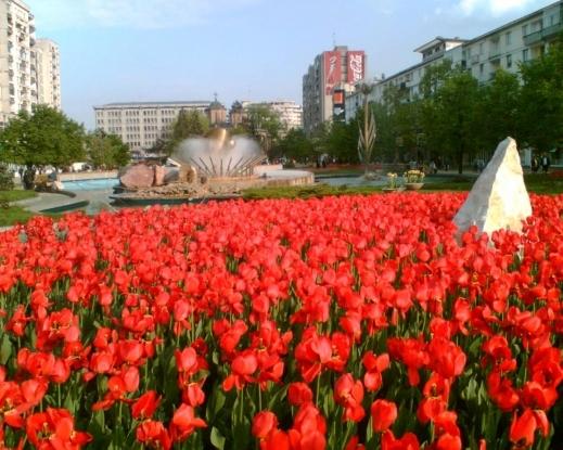 Simfonia Lalelelor are loc în acest an între 24 şi 26 aprilie
