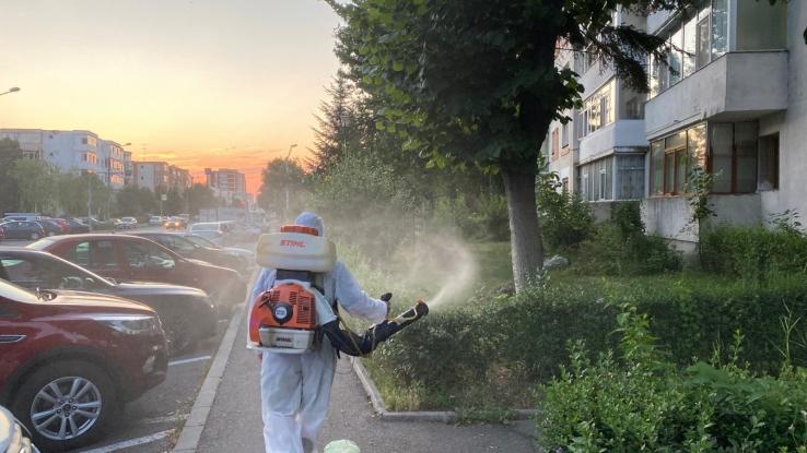 Continuă stropirile contra țânțarilor și a altor insecte dăunătoare în Pitești!