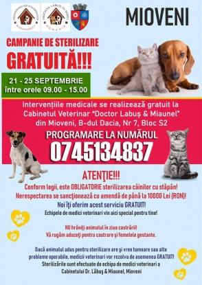 Campanie GRATUITĂ de STERILIZARE a câinilor și pisicilor, la Mioveni!