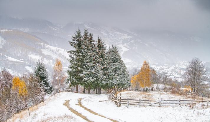 Pe DN 73 în Argeș, zona Rucăr – Bran, ninge abundent și se circulă în condiții de iarnă