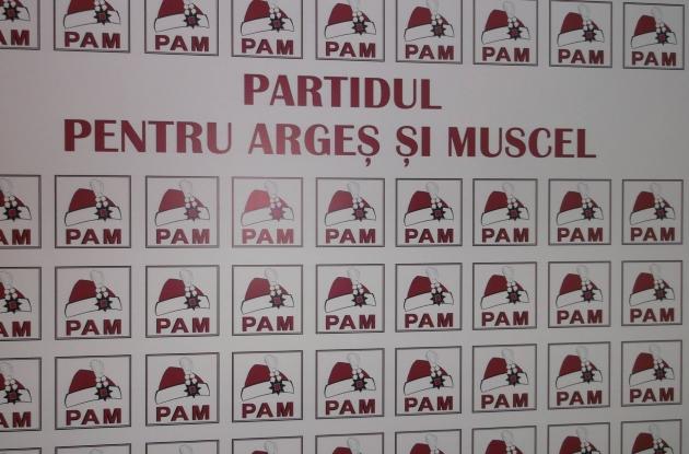 Tensiune in PAM