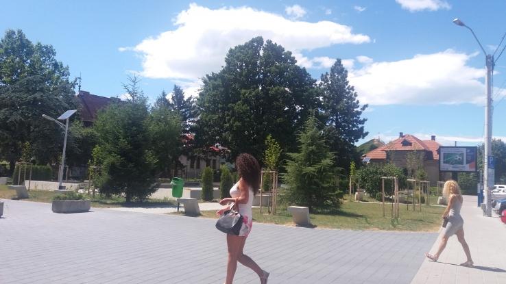 O nouă faţă a parcului de la Brătianu