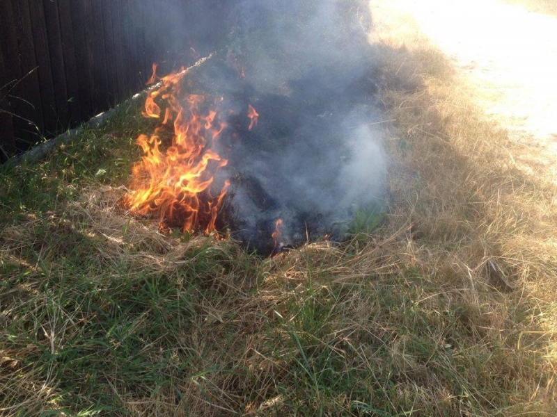 Vegetaţie uscată incendiată la Buzoieşti