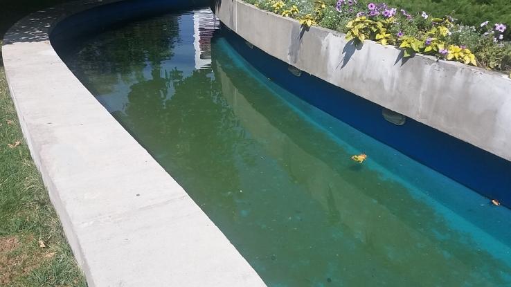 Peştii din râul lui Pendiuc au dispărut