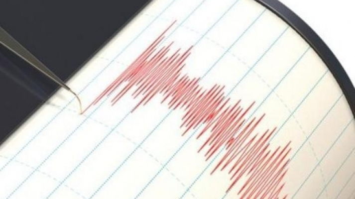 Cutremur în Vrancea!