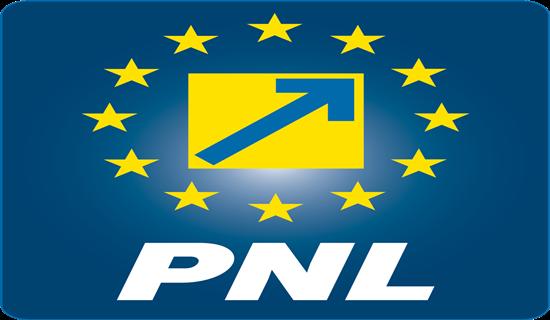 Criterii pentru candidaţii PNL Argeş la Parlament