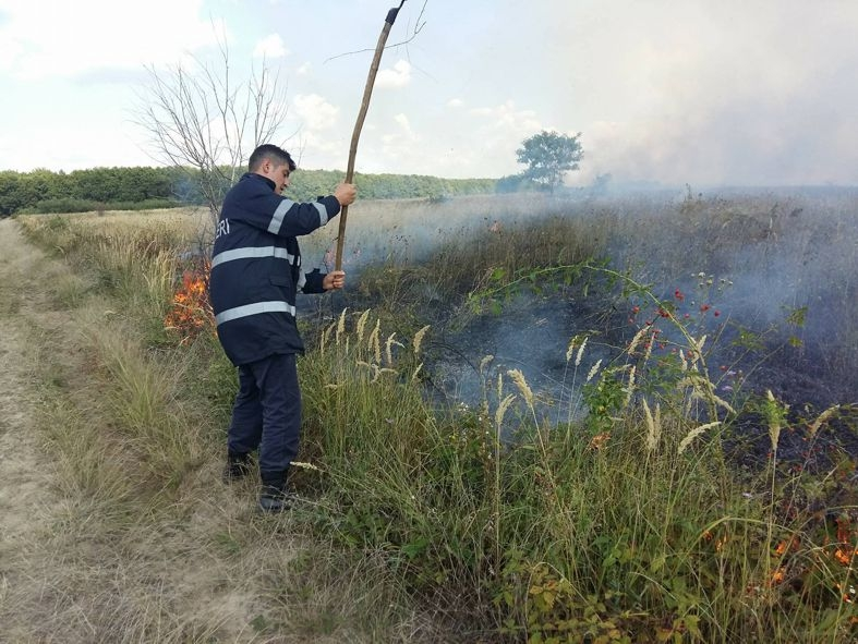 Incendii izbucnite din cauza vegetaţiei uscate