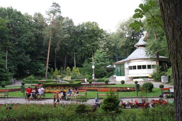 Pădurea Trivale, aproape să fie declarată arie protejată