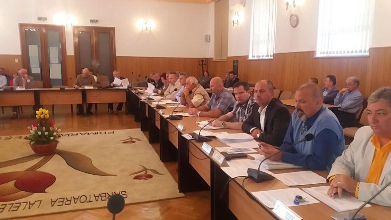 Dănuţ Dinu s-a opus risipei de bani publici