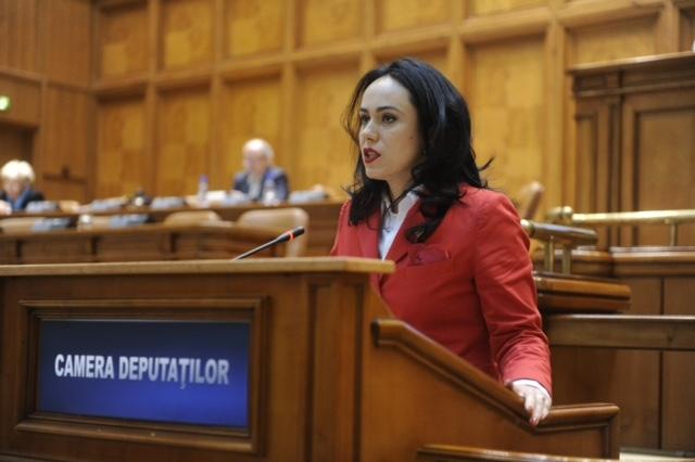 Simona Bucura:  Este nevoie de un Cod Administrativ