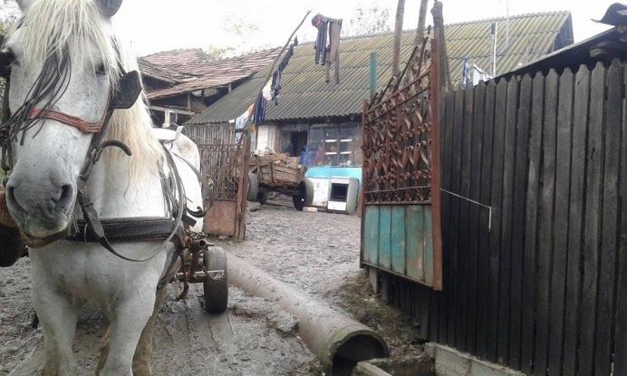 Case reabilitate la Bogaţi pe banii primăriei
