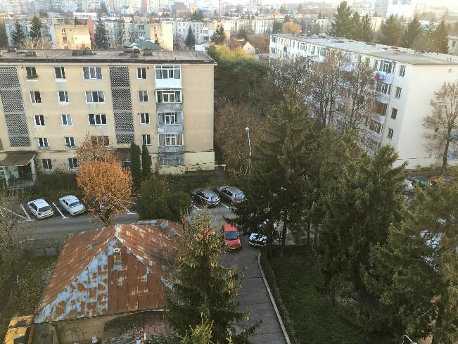 ISU aruncă pisica în curtea primăriei Pitești
