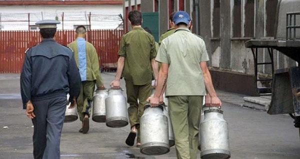 Deţinuţii au venit la Bursa locurilor de muncă