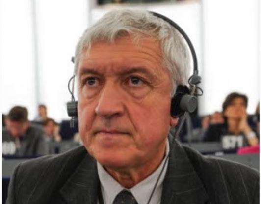 Mircea Diaconu, discurs emoţionant în Parlamentul European