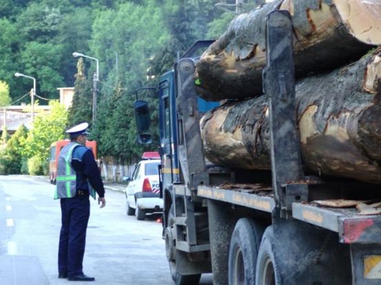 Amenzi pentru transport ilegal de lemne
