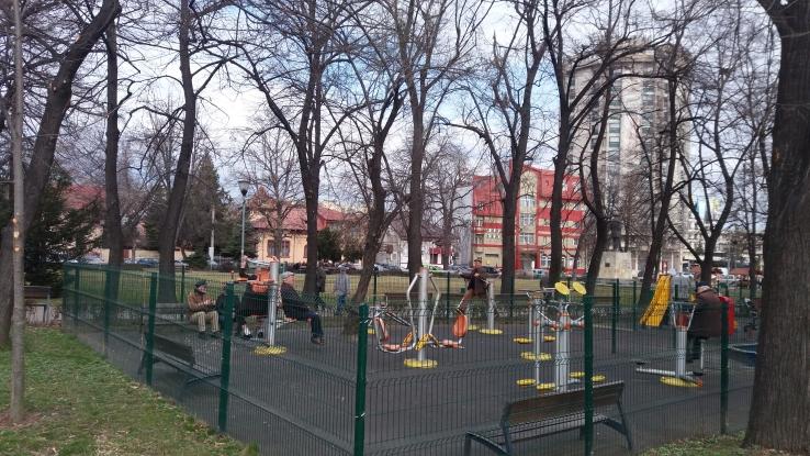 Aparatele de fitness din parcuri - cerere mare