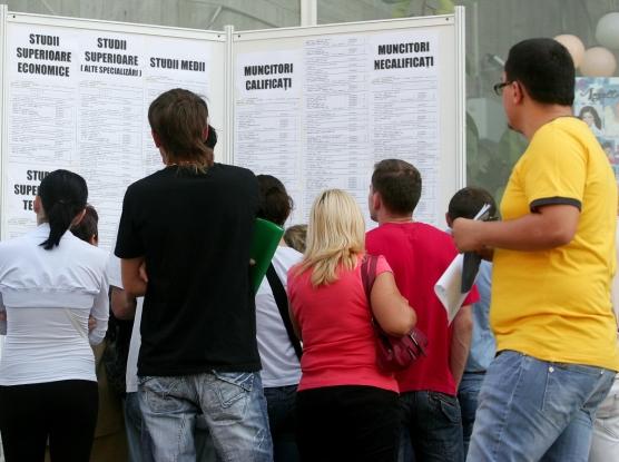 Bursă generală a locurilor de muncă în Argeş