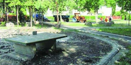 Ionică promite parcul Făget
