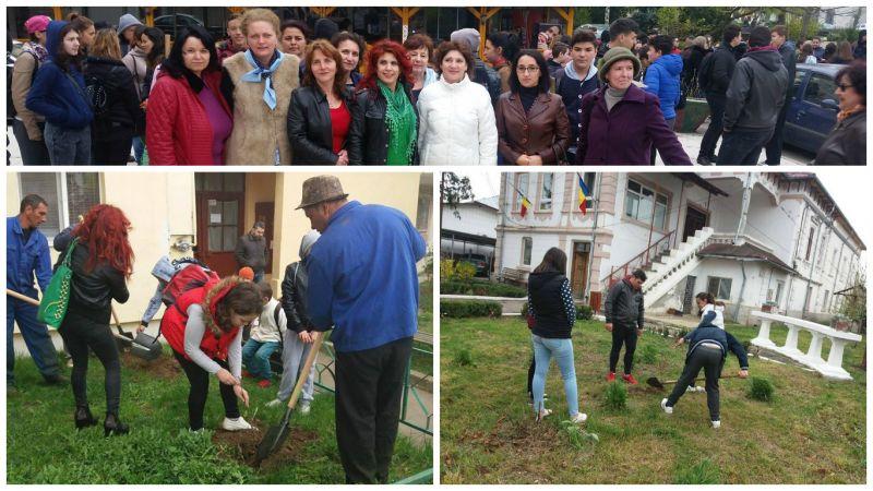 Voluntari pentru verde, viață, viitor!