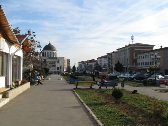 Zilele oraşului Topoloveni