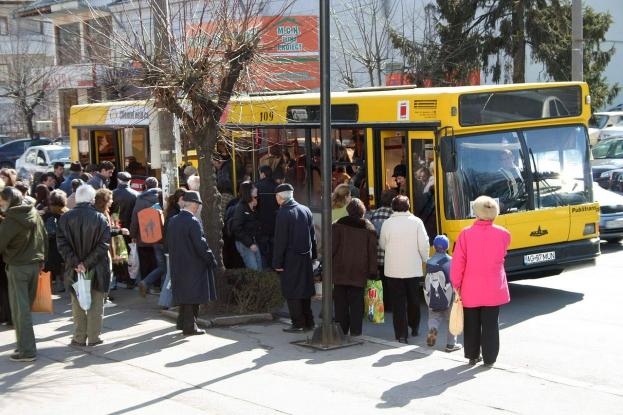 Noi linii de autobuze în Piteşti