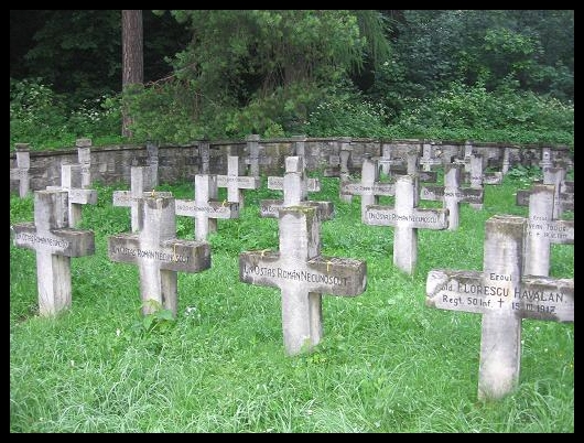 Program pentru reabilitarea cimitirelor eroilor din Argeş