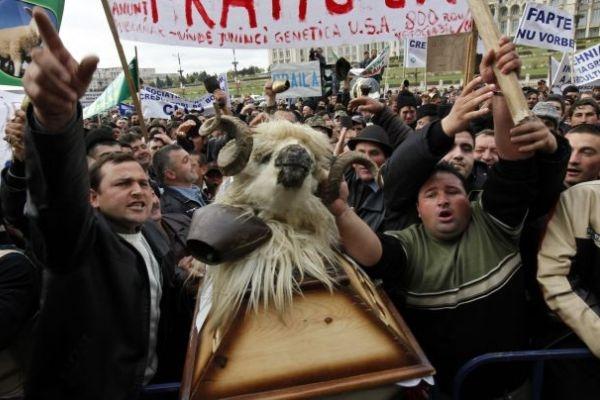 Protest argeşean la Ministerul Agriculturii