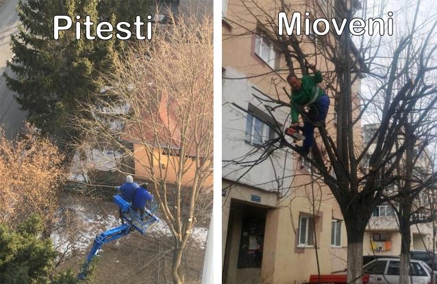 La Piteşti, siguranţa angajaţilor este pe primul loc. La Mioveni se lucrează în zodia maimuţei...