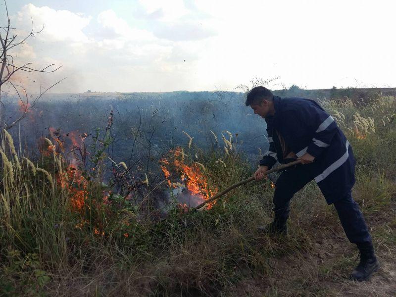 Mioveni: Atenţie la arderea vegetaţiei uscate!