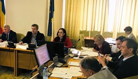 Simona Bucura Oprescu, invitaţie la consultare publică