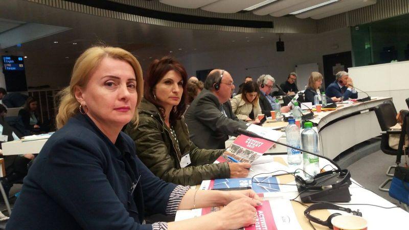 Mioveniul a fost reprezentat la Bruxelles