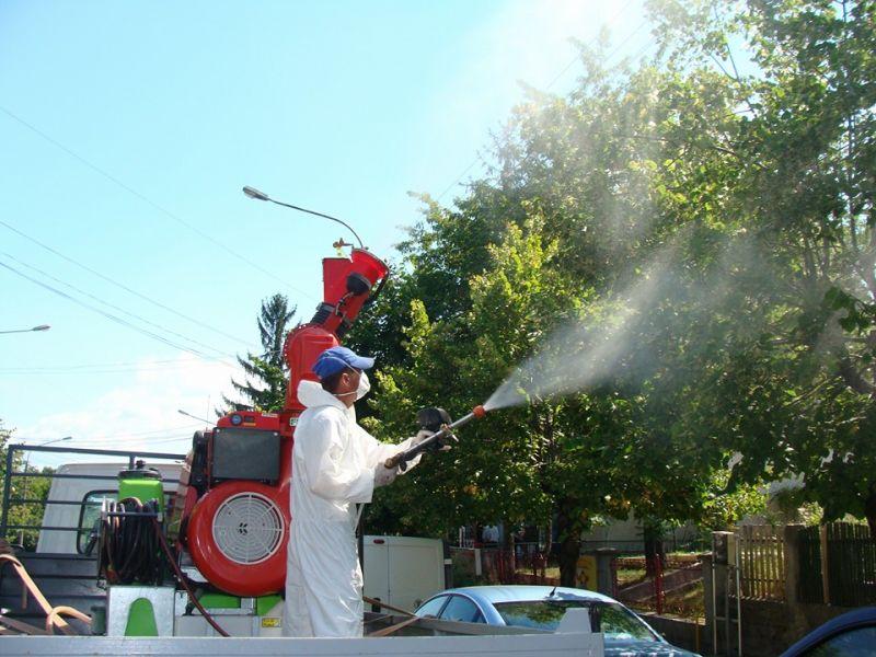Se efectuează stopiri împotriva bolilor și dăunătorilor plantelor