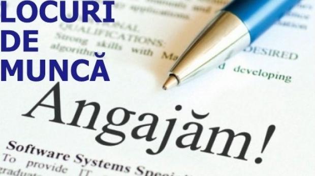 Noi locuri de muncă vacante în Argeş
