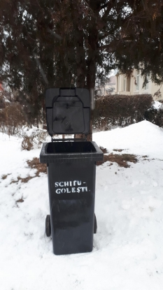Sistem nou de colectare a gunoiului la Schitu Goleşti