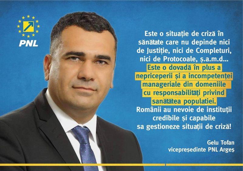 """Gelu Tofan, Vicepreşedinte PNL Argeş: """"Epidemia de gripă, susţinută de incompetenţă''"""