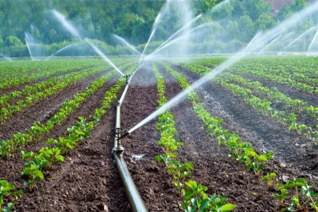 Noi fonduri pentru agricultorii argeşeni