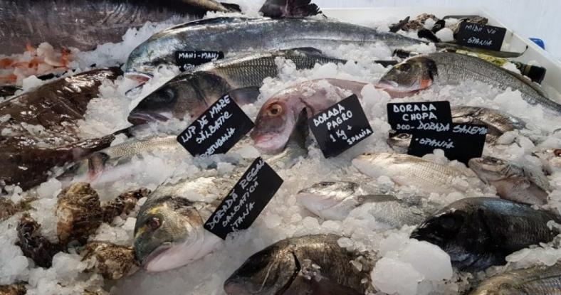 Piaţa peştelui din Argeş, zguduită de percheziţii de amploare