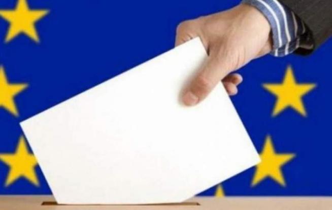 Rezultate finale la alegerile europarlamentare în Argeş